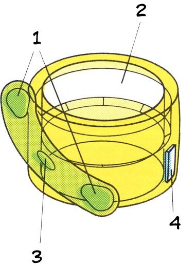 Строение и состав кольца Мандарина
