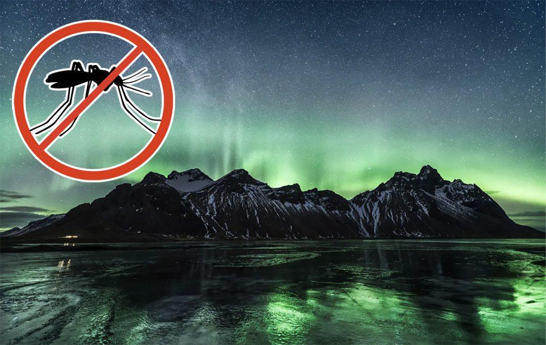 Почему в Исландии совершенно нет комаров